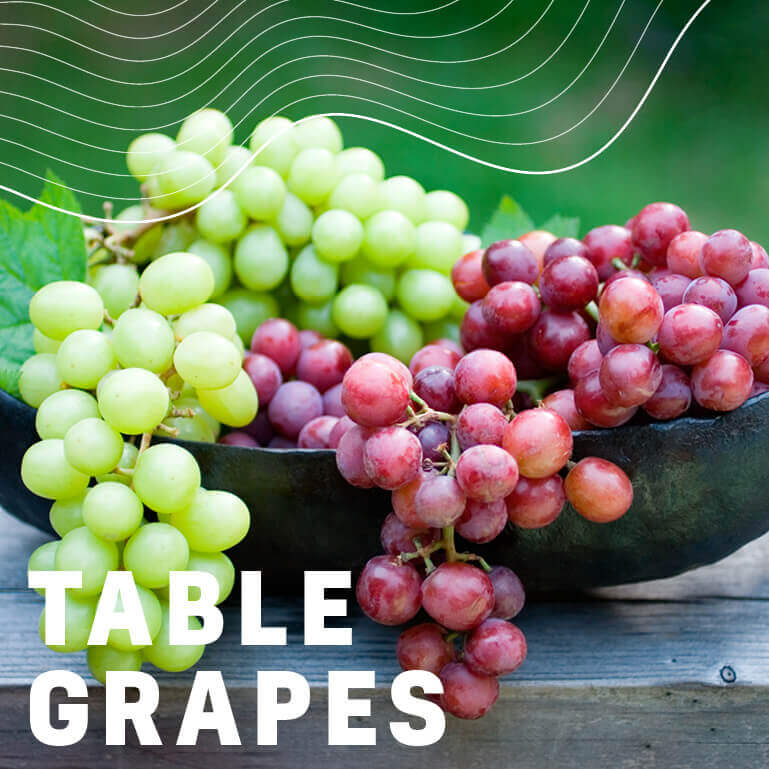 Afrikelp Table Grapes