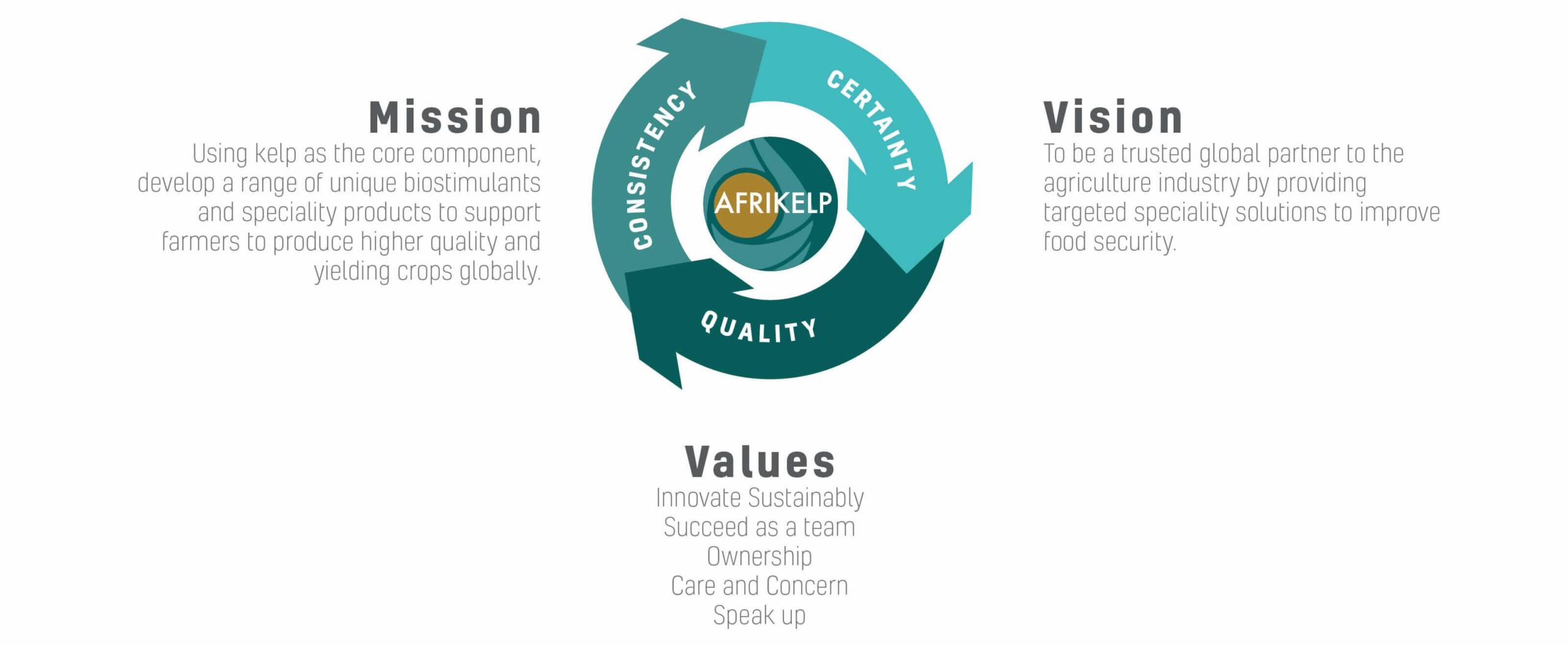 Afrikelp Vision Mission Values